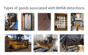 Types of goods associated with BMSB detections
