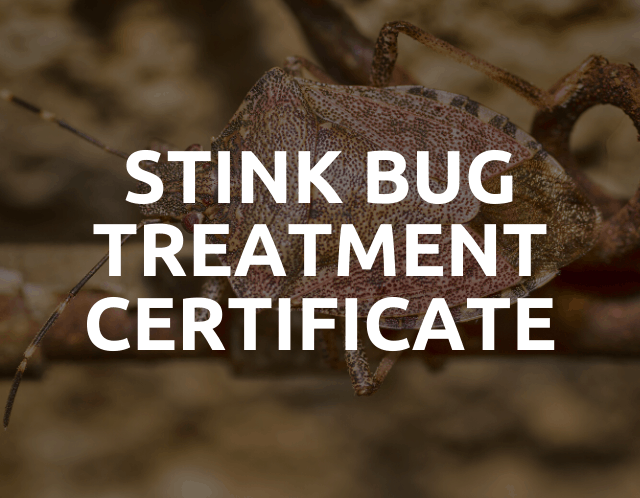 stink bug treatment certificate
